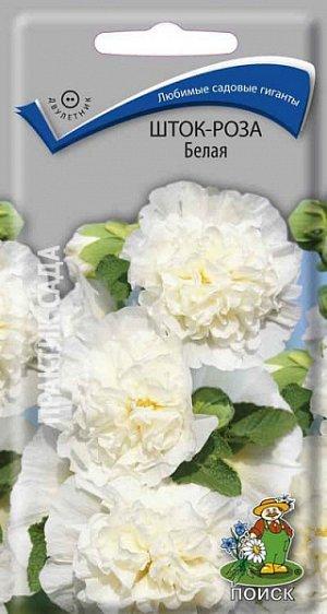 Шток-роза Белая