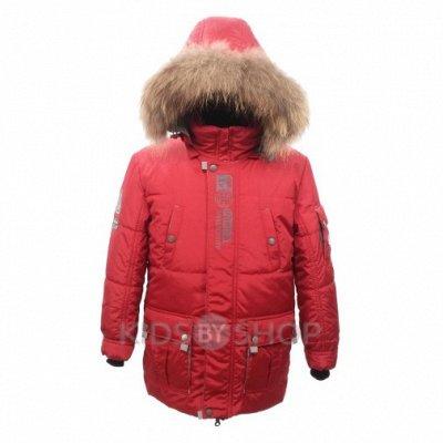 🔥Верхняя одежда для детей. Качество шикарное.🔥 — Для мальчиков. Зимние куртки. — Верхняя одежда