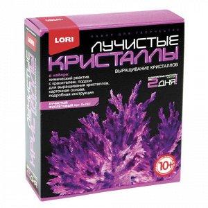"""Набор для изготовления лучистых кристаллов """"Фиолетовый крист"""
