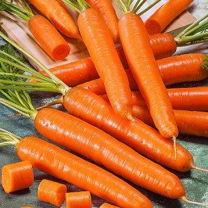 Морковь Ранняя сладкая F1 1гр