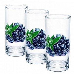 Набор 3 стакана (Ежевика) ДСГ424020311