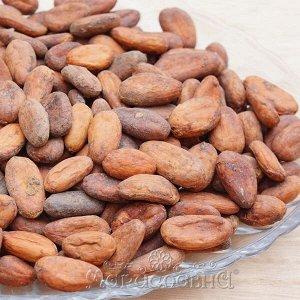 Какао-бобы отборные цельные Тринитарио