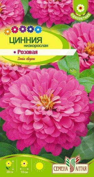 Цветы Цинния Низкорослая Розовая/Сем Алт/цп 0,3 гр.