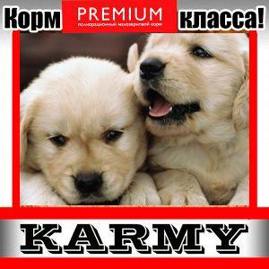 Karmy - корм для собак и кошек премиум класса! №30 — STARTER корм для щенков, беременных и кормящих — Для собак