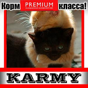 Karmy - корм для собак и кошек премиум класса! №30 — KITTEN для котят, беременных  и кормящих  — Корма