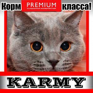 Karmy - корм для собак и кошек премиум класса! №30 — ADULT сухой корм для кошек — Корма