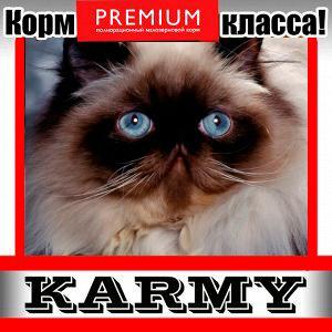 Karmy - корм для собак и кошек премиум класса! №30 — SPECIALIZED корм для кошек различных пород — Корма