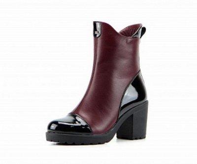 ~ED`ART - Стильная, комфортная обувь. Натуральная кожа. — Полусапоги - Зима (шерсть/мех) — Зимние