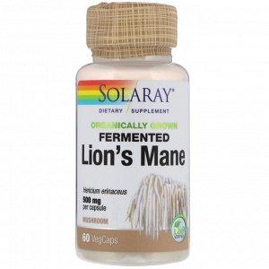 Solaray. Organically Grown Fermented Lion's Mane Mushroom. 500 mg . 60 VegCaps