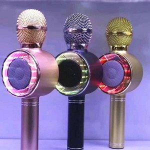 Беспроводной караоке микрофон с колонкой Wster WS-668