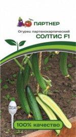 Семена Огурец партенокарпический Солтис F1 5 шт
