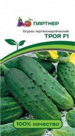 Семена Огурец партенокарпический Троя F1 10 шт