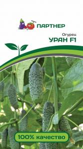Семена Огурец партенокарпический Уран F1 5 шт