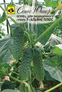 ТМ Семко Огурец партенокарпический Альянс Плюс F1/ гибриды с длиной плодов 12-24 см
