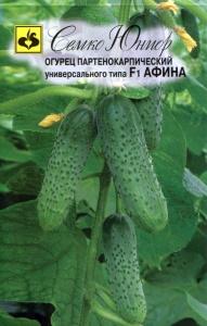 ТМ Семко Огурец партенокарпический Афина F1/ гибриды с длиной плодов 6-12 см
