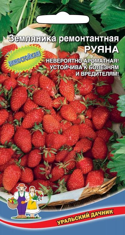 Семена 🍅 Уральский дачник 🍅 ваш богатый урожай! В наличии! — Земляника и ягоды — Семена ягод