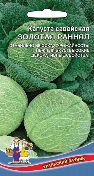 Капуста савойская ЗОЛОТАЯ РАННЯЯ