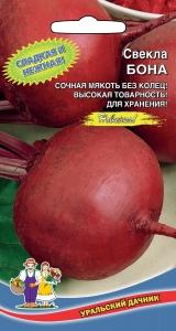 Отличные семена Уральский дачник. В ПУТИ — Свекла