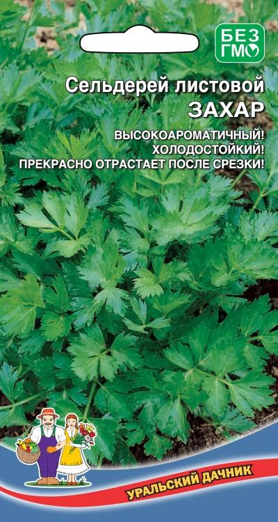 Отличные семена Уральский дачник — Сельдерей