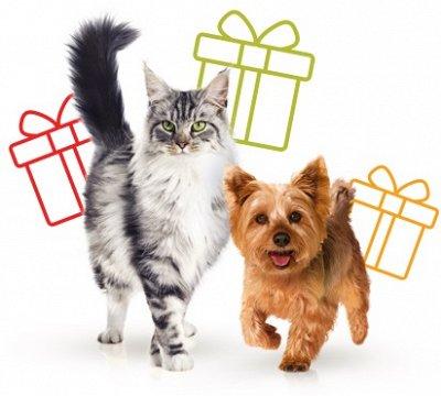 Хвостатая закупка-65 — По просьбам — Для животных