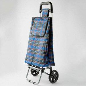 Тележка багажная ручная 30кг ТБР-15