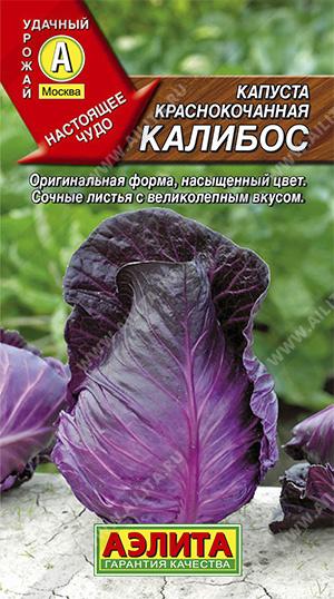 Капуста к/к Калибос (2023; 08.217.09)