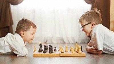 ТМ Нескучные игры! Игрушки и игры деткам от производителя!   — Нарды, Шахматы (дерево) — Настольные игры