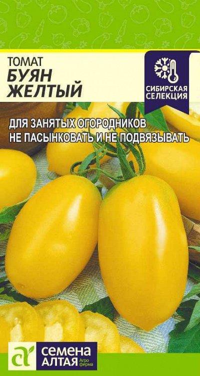 Семена Алтая. Отличная всхожесть,Огромный выбор сортов. — Томат, тыква, фасоль — Семена овощей