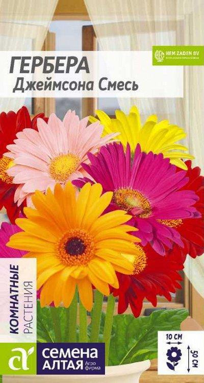 Семена Алтая. Отличная всхожесть,Огромный выбор сортов. — Комнатные цветы — Семена двулетние