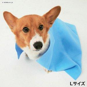 НОВИНКА! Супервпитывающее полотенце для домашних животных