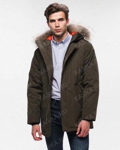 XASKA - русские мужские куртки для суровых зим — Куртки на утеплителе — Куртки