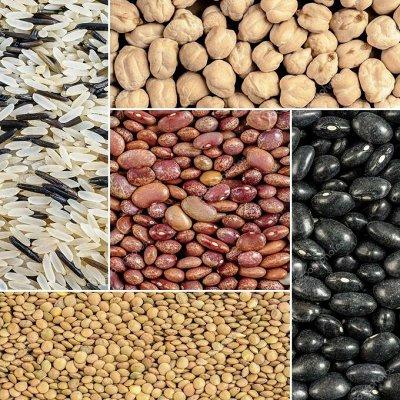 Сундук орехов и сухофруктов. — Рис,фасоль по 500г — Крупы