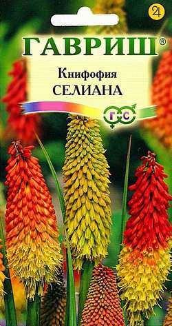 Книфофия ягодная (Тритома) Селиана* 0,1 г