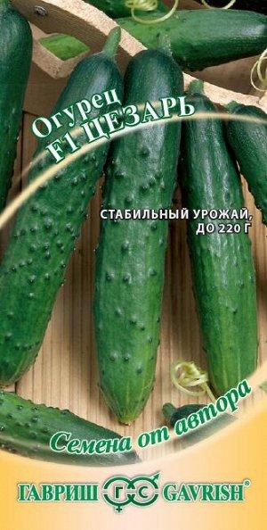 Огурец Цезарь F1 10 шт.  автор. Н19 DHп