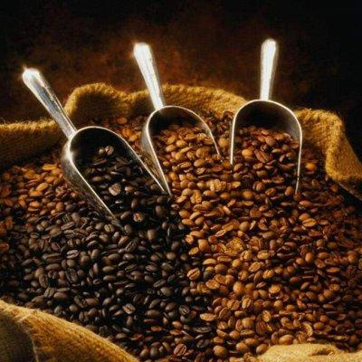 ☕Любимый кофе 100 % арабика. Больше грамм в каждой пачке☕ — 550 гр, 100 % Арабика. Зерно и молотый — Кофе и кофейные напитки