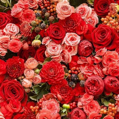 Русский огород - семена овощей, цветов  В наличии — Цветочки — Семена цветов