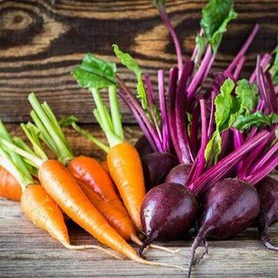 Русский огород - семена овощей, цветов  В наличии — Свекла + Морковь + Брюква + Репа — Семена овощей