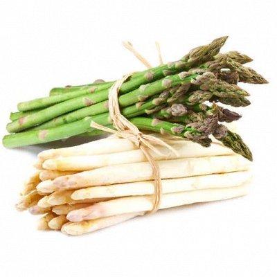 Русский огород - семена овощей, цветов  В наличии — Спаржа — Семена овощей