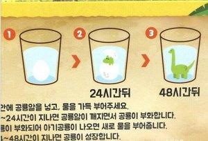 Набор яиц Диноинкубатор