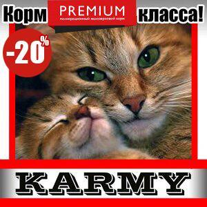 Karmy - корм для собак и кошек премиум класса! №30 — SPECIALIZED корм для кошек различных пород 10 кг! — Корма