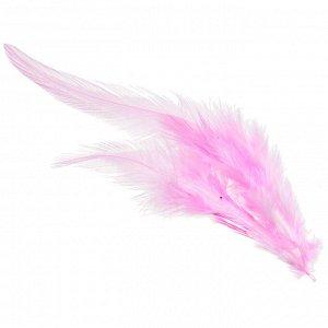 Перья петуха, цвет розовый, размер 12-15 см