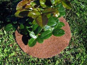 Мульчаграмм, орехнин!Акция на круги — Мульчаграм приствольный круг — Сад и огород