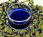 Синий чай (Клитория тройчатая)