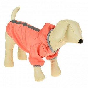 Куртка-ветровка со светоотражающими полосками,  L (ДС 28-30 см, ОГ 36-40 см), розовая