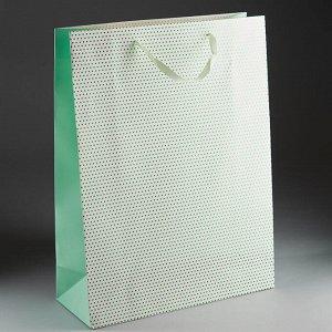 Пакет подарочный 40х30х12см ПАК2-078 min=12штук