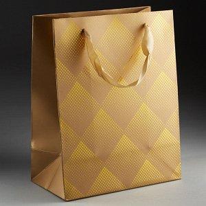 Пакет подарочный 23х18х10см ПАК2-055 min=12штук