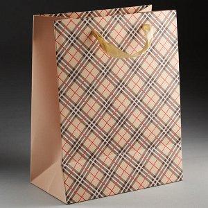 Пакет подарочный 23х18х10см ПАК2-061 min=12штук