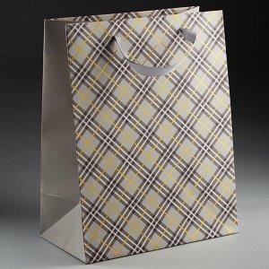 Пакет подарочный 23х18х10см ПАК2-064 min=12штук