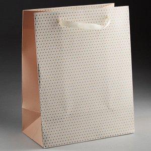 Пакет подарочный 23х18х10см ПАК2-073 min=12штук