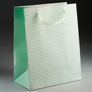 Пакет подарочный 23х18х10см ПАК2-076 min=12штук